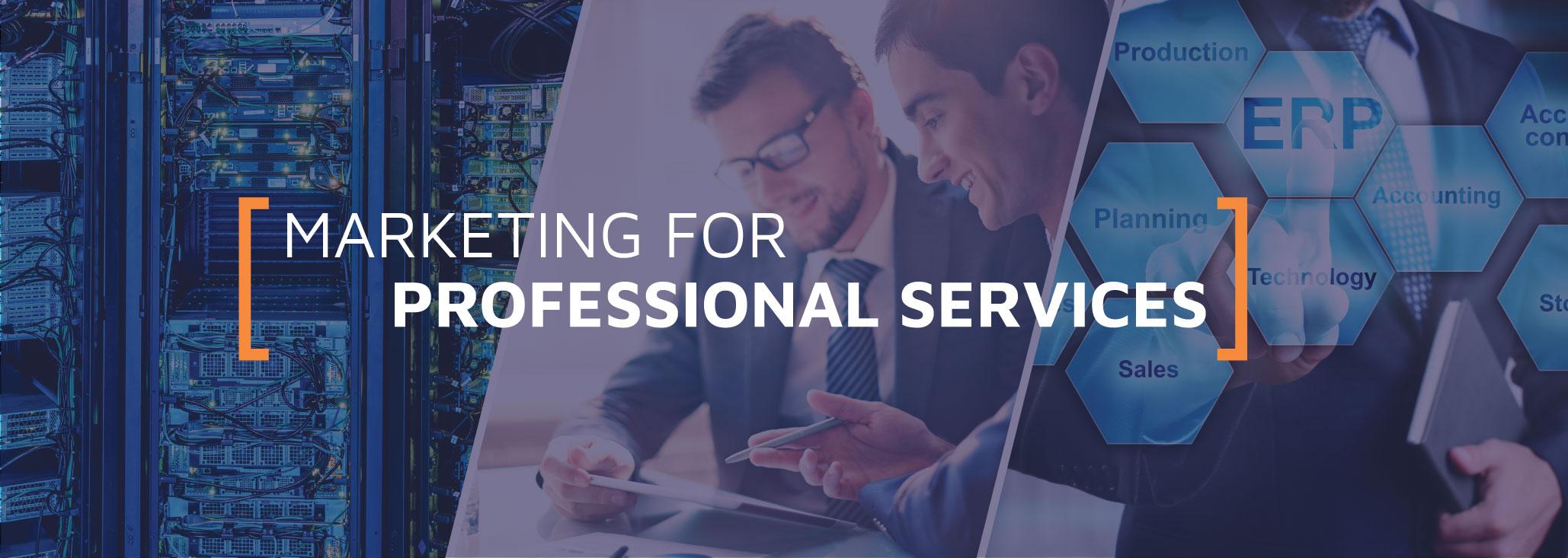 ProfessionalServicesVert-1